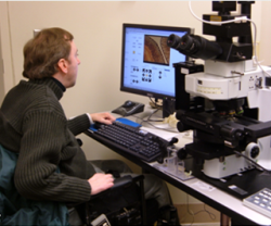 A Scientist Using AccessScope