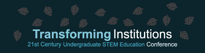 Transforming Institutions Banner